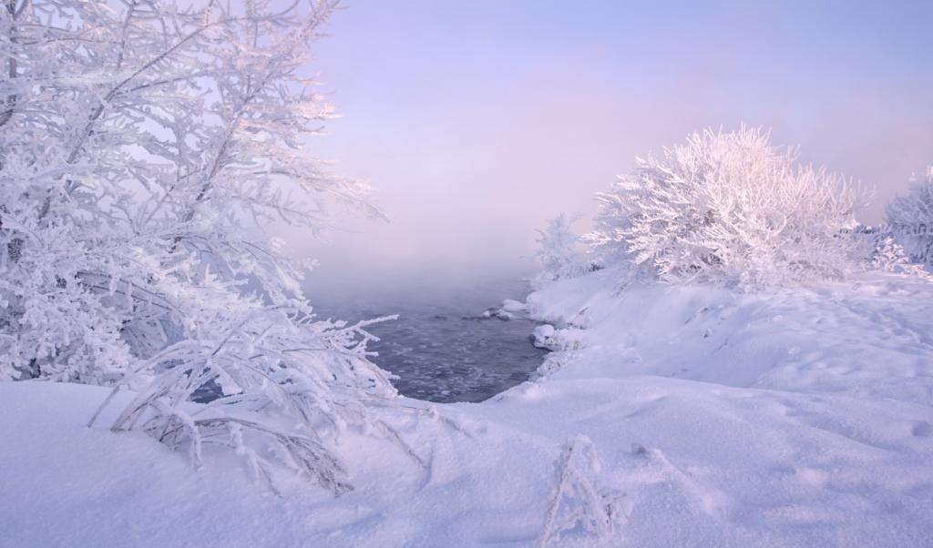 Орловское озеро, город Курган