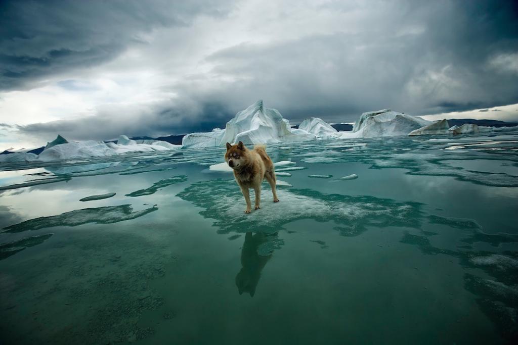 Arktika-Fotograf-Sebastyan-Kouplend_1