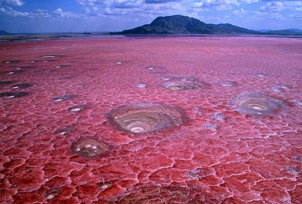 7. Танзанийское озеро Натрон