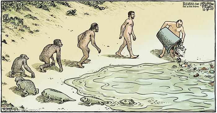 1. Эволюция в двух словах