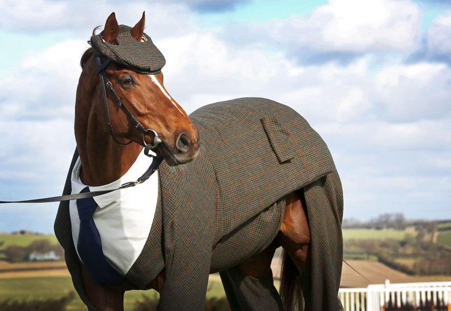 «Конь в пальто» это уже не шутка