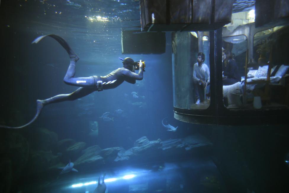 Первая подводная спальня с акулами в Париже