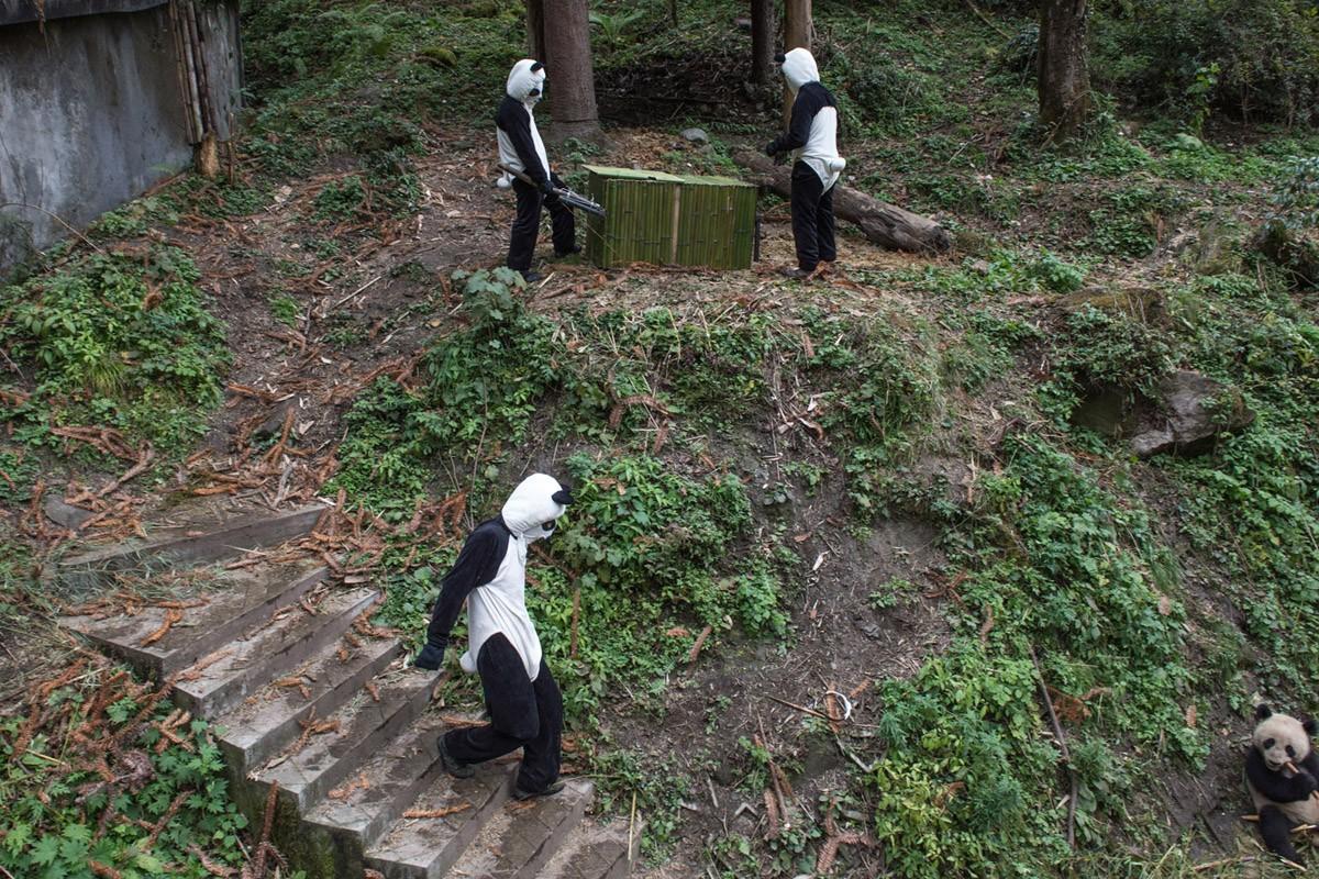 Pandas04