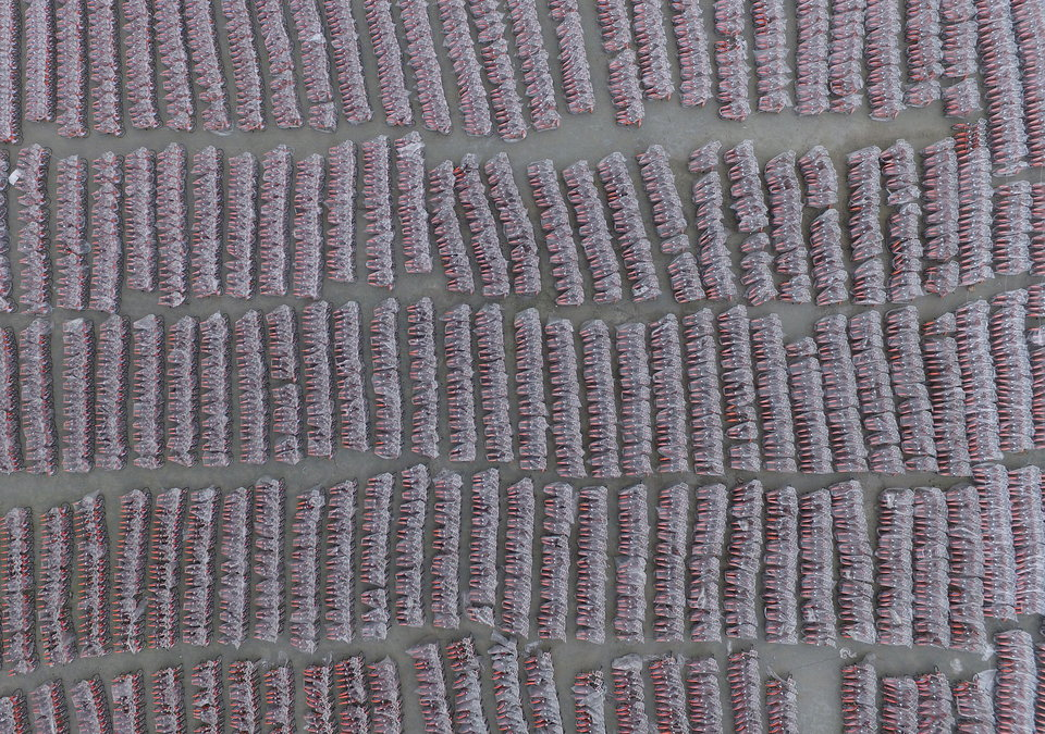 An aerial view of around public bicycles seen under plastic rain cover before being put into use in Guangzhou