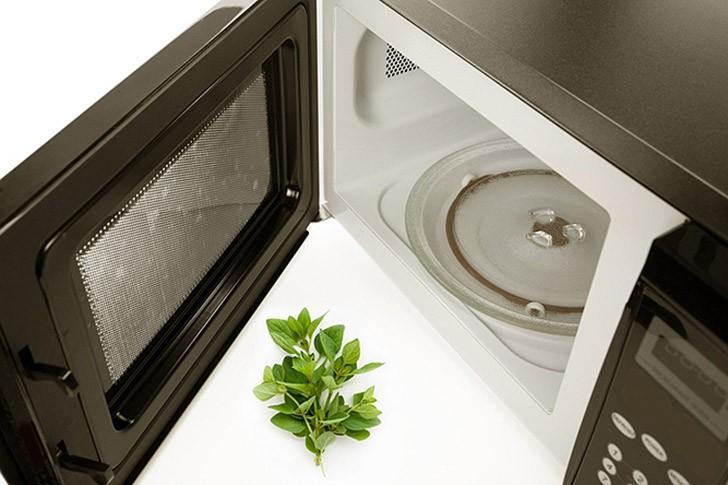 microwave15