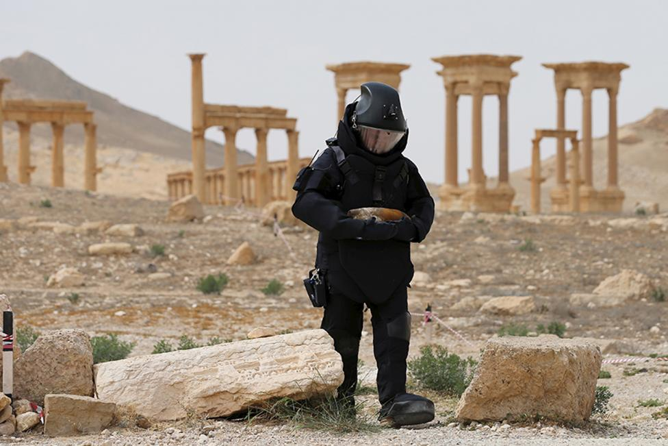 A Russian army sapper works at the historic part of Palmyra, Syria, in this handout photo released by Russian Ministry of Defence