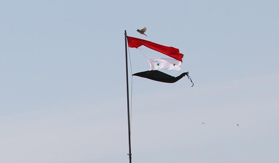 A bird flies near a torn Syrian national flag in the city of Qamishli