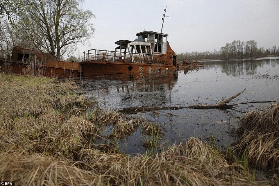 redkie-foto-chernobylskoj-aes-quibbll-14