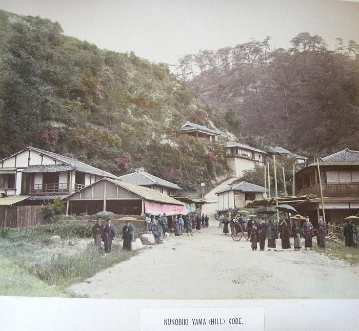 Japanisincolor-15