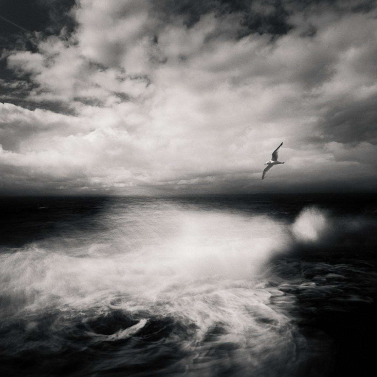 fotograf-Zoltan-Bekefi_4