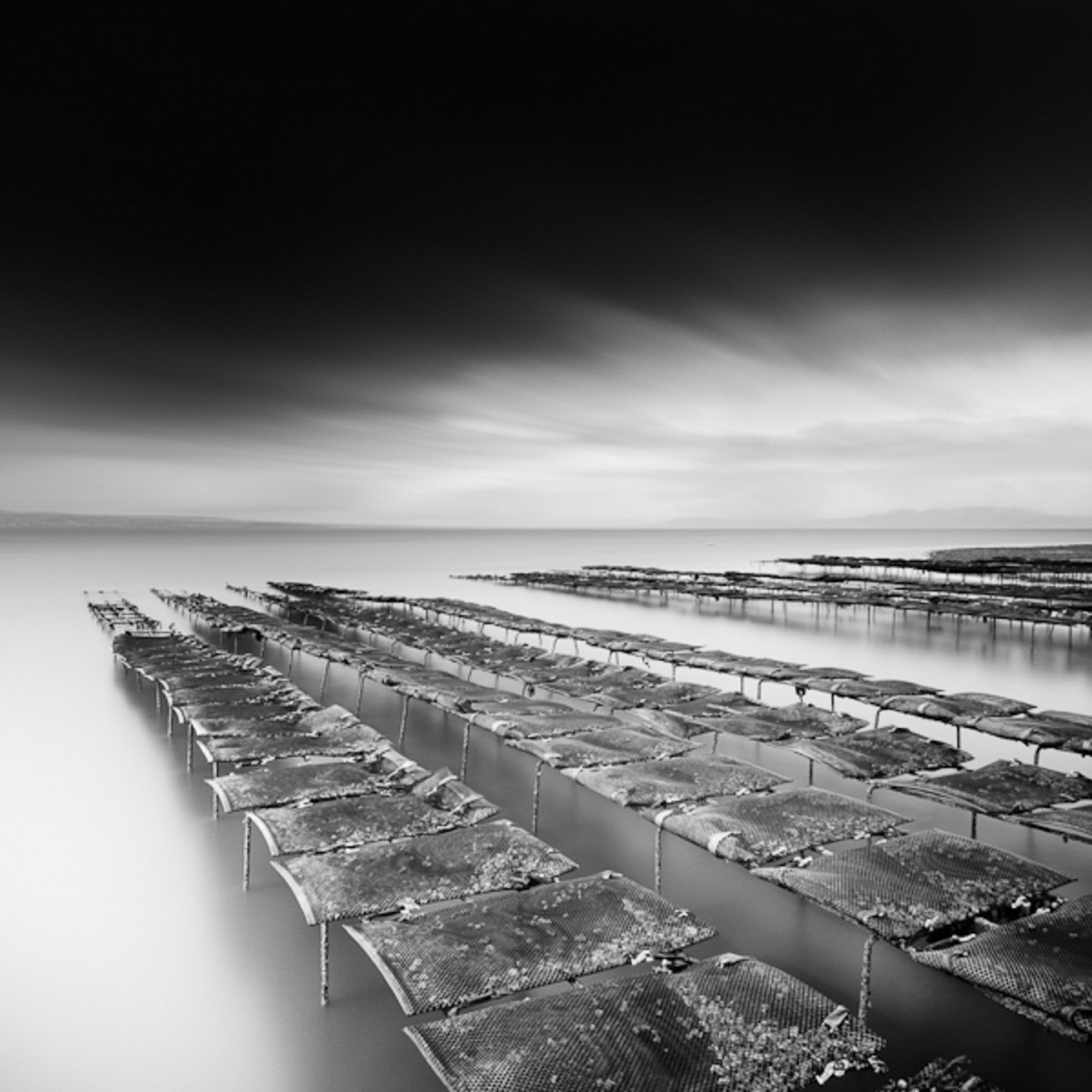 fotograf-Zoltan-Bekefi_8