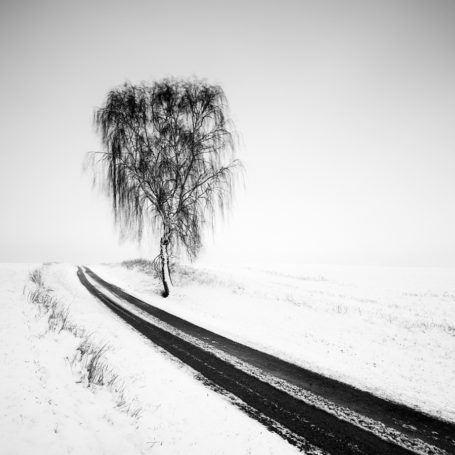 luchshie-cherno-belye-fotografii_9