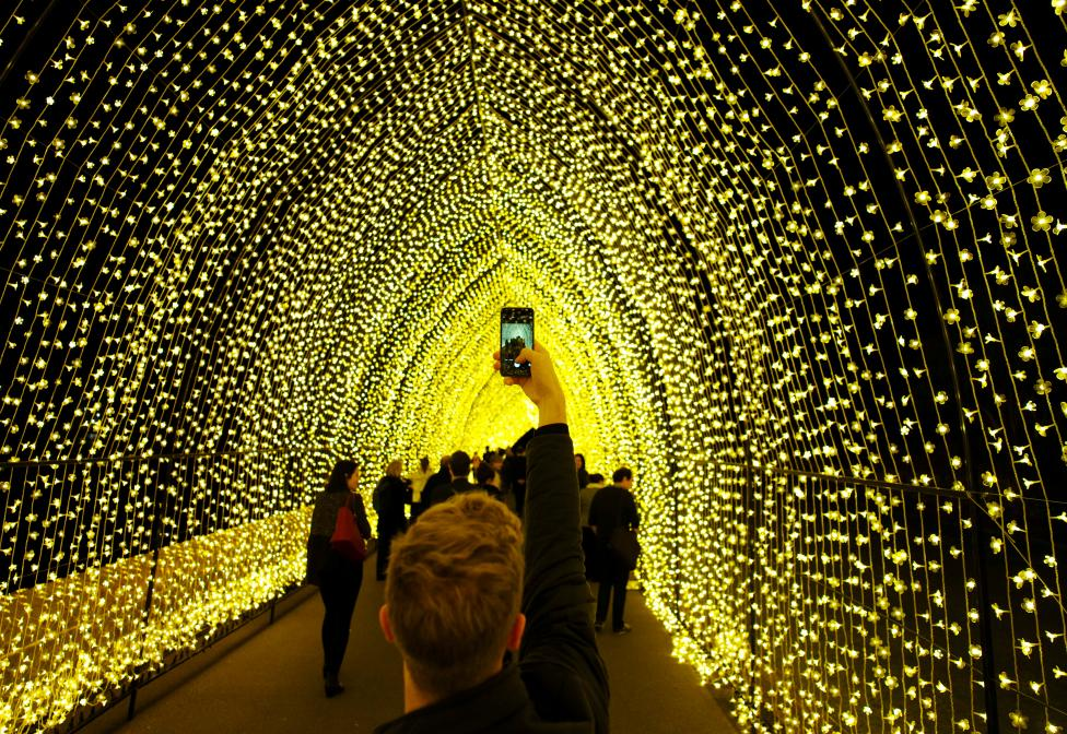 A visitor to the Sydney Botanical Garden's inaugural contribution to the Vivid Sydney light festival takes a picture of the 'Cathedral of Light' during a preview of the annual interactive light installation and projection event around Sydney, Australia
