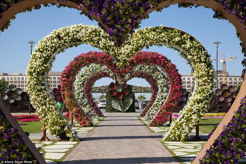 botanicheskie-sady-11-7