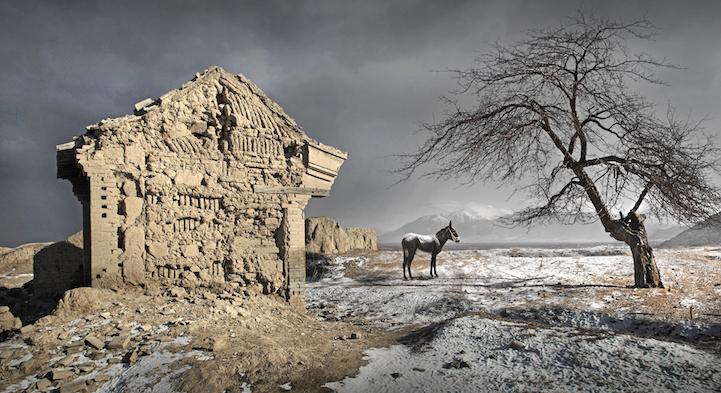 ruiny-dereven-8-5