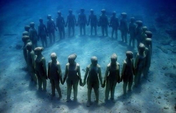 Кто живет на дне морском?