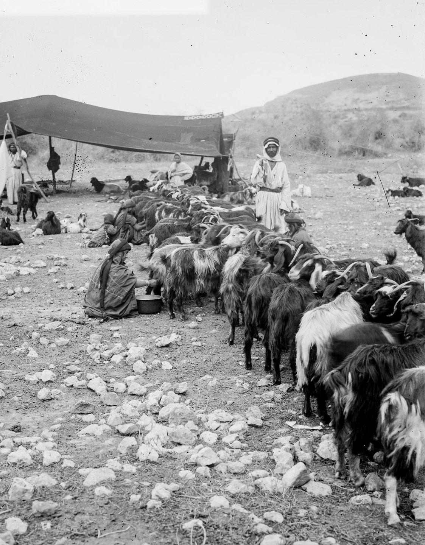 beduiny-retro-foto_21