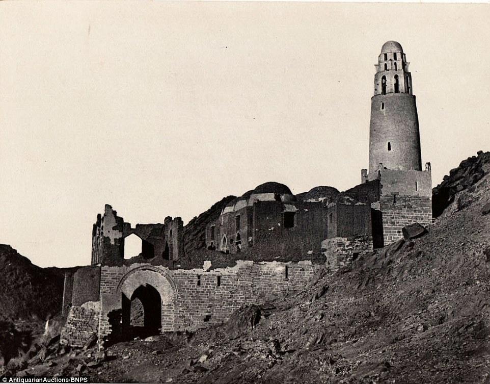 egipet-31-8