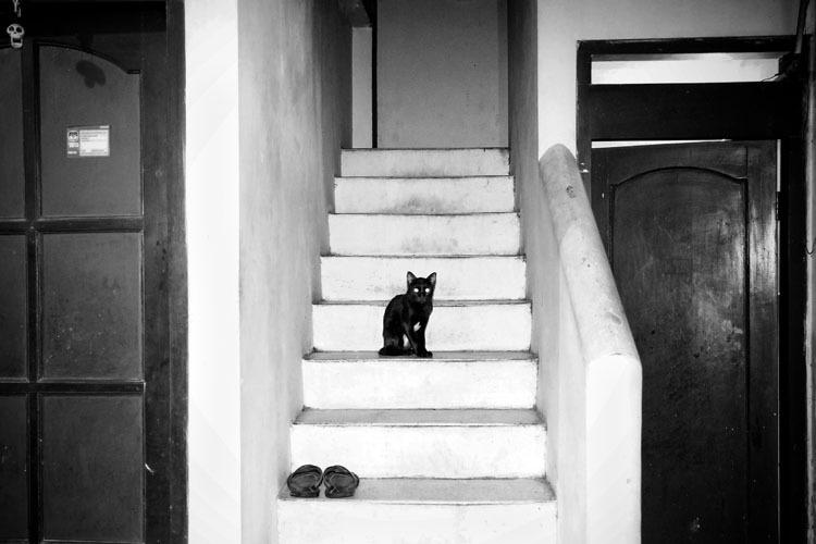 fotograf-Adzhi-Susanto-Anom_14