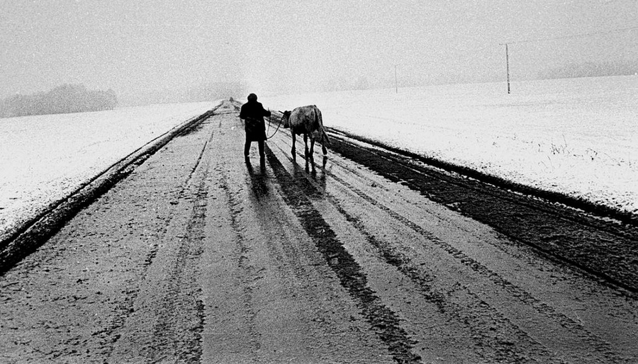 fotograf-Vladimir-Lagranzh__55