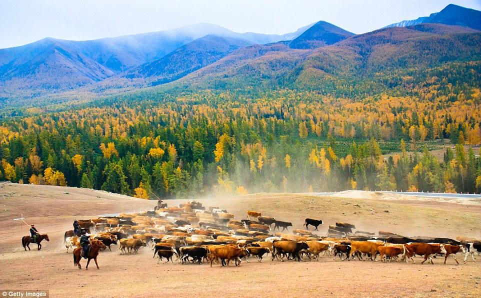 kitajskie-pejzazhy-14-11