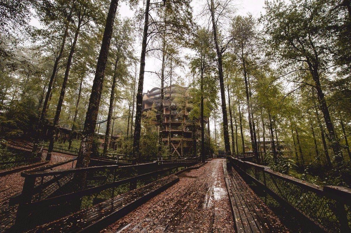 Картинки по запросу гостиница в лесу