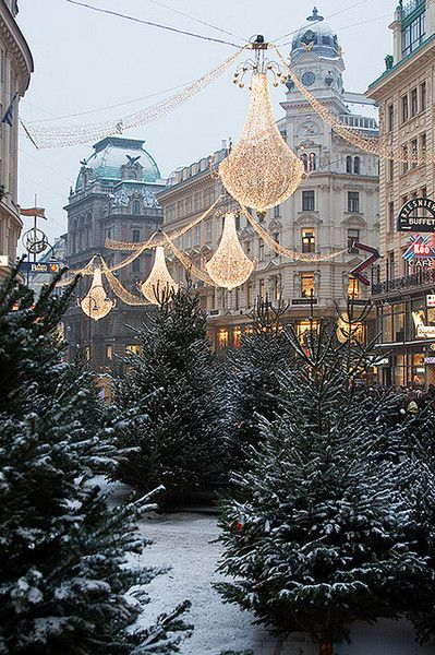 Рождественская Вена, Австрия