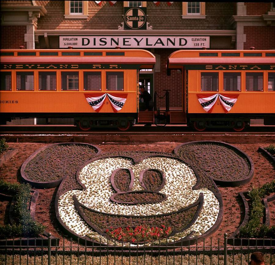 Disneyland-29-8