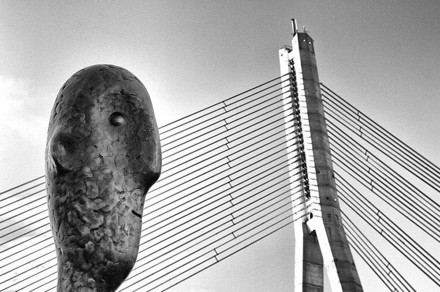 finalisti_fotokonkursa_The_Art_of_Building_9