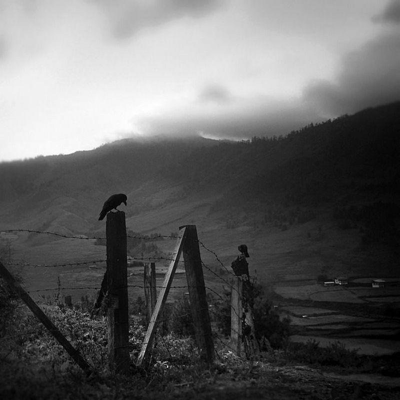 fotograf_khengki_koentzhoro_38