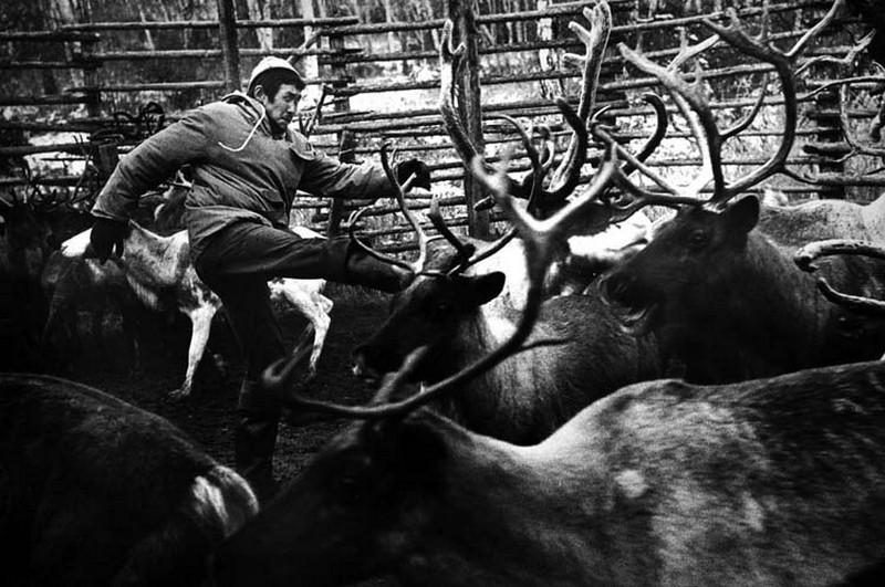 momenty_zhizni_fotograf_mark_shtejnbok_7