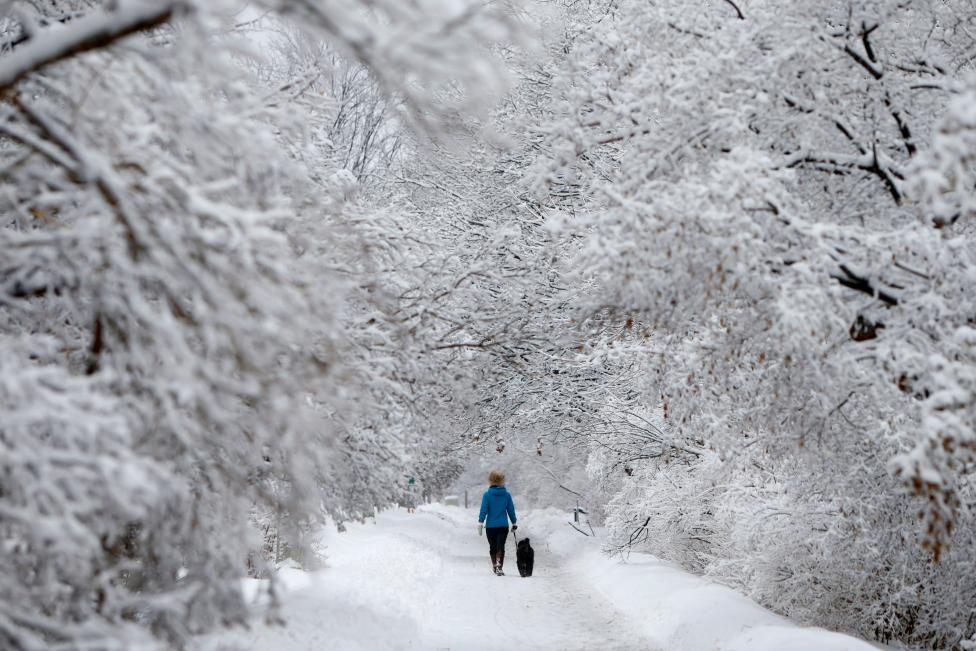 A woman walks a dog on a snow-covered path beside the Rideau Canal in Ottawa
