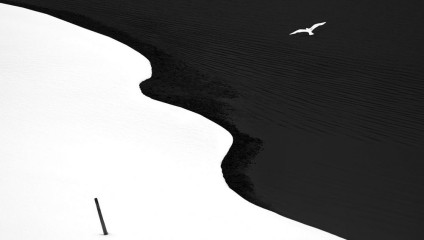 Лучшие чёрно-белые снимки фотоконкурса Siena International Photography Awards 2016