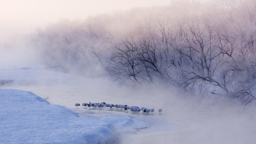 zimnij-pejzazh-10-1-990x557