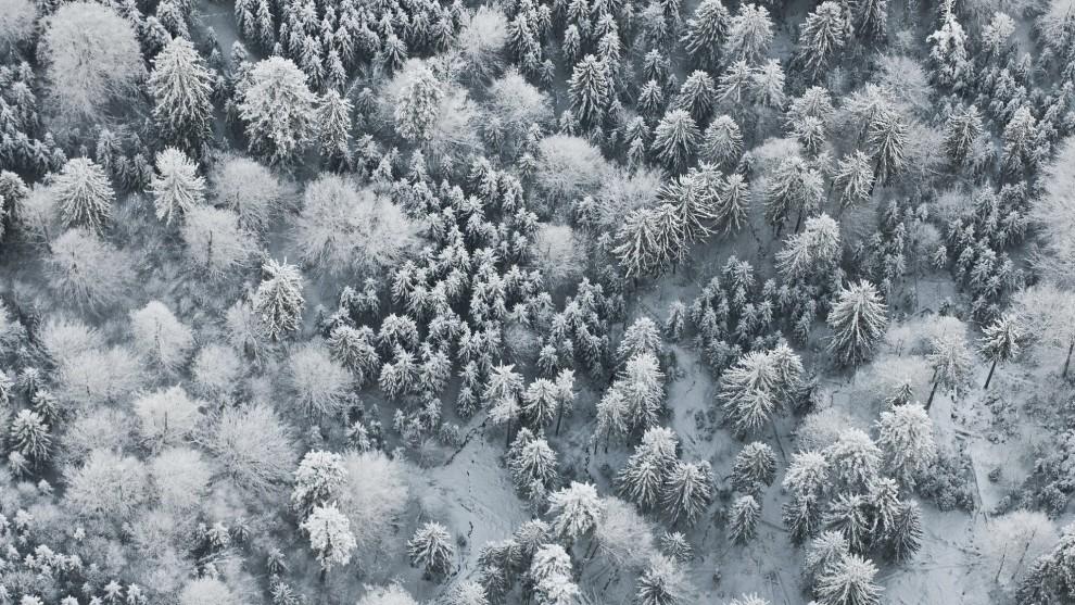 zimnij-pejzazh-10-9-990x557