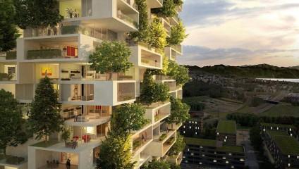 В Китае к 2019 году построят «вертикальные леса»