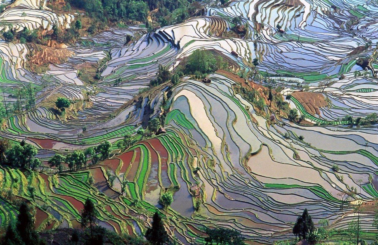Нет, это не картины Ван Гога. Это Китай, провинция Юньнань.