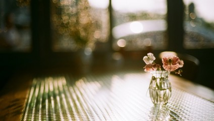Фотограф Junghyun Choi