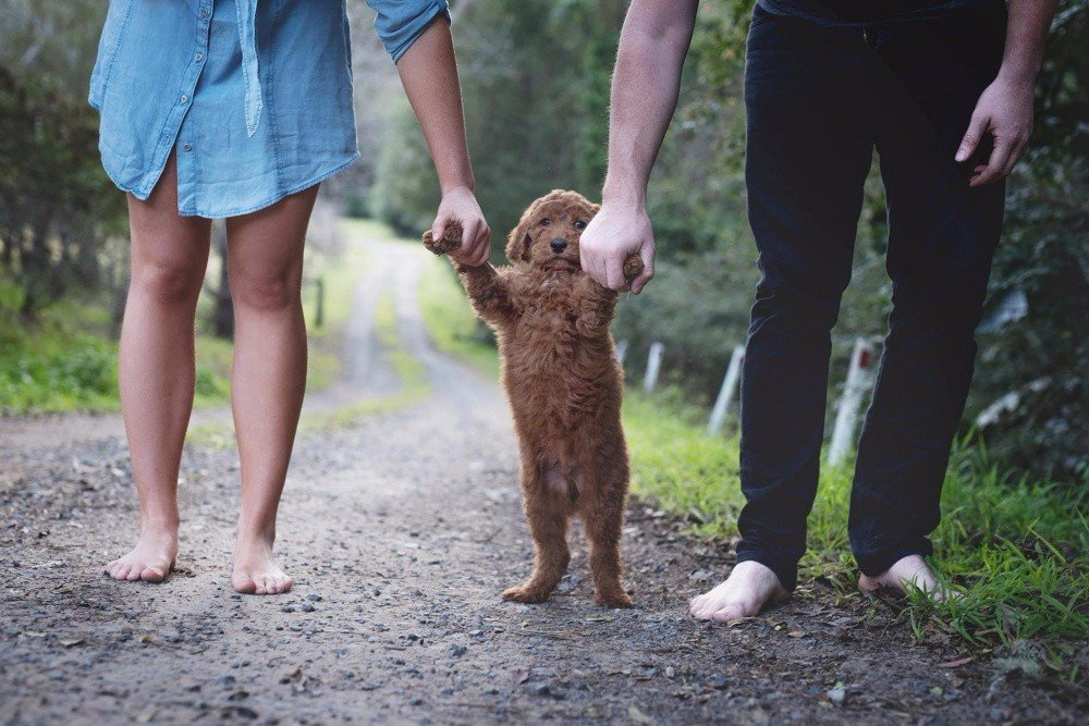 Семейное счастье молодоженов Мэтта и Эбби