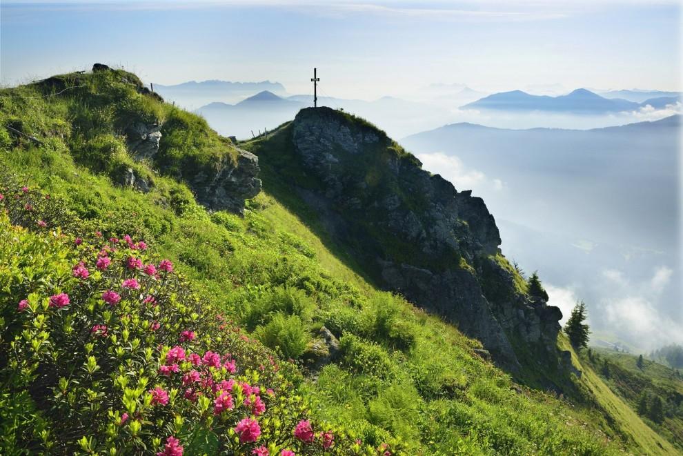 Гора Фельдальпхорн