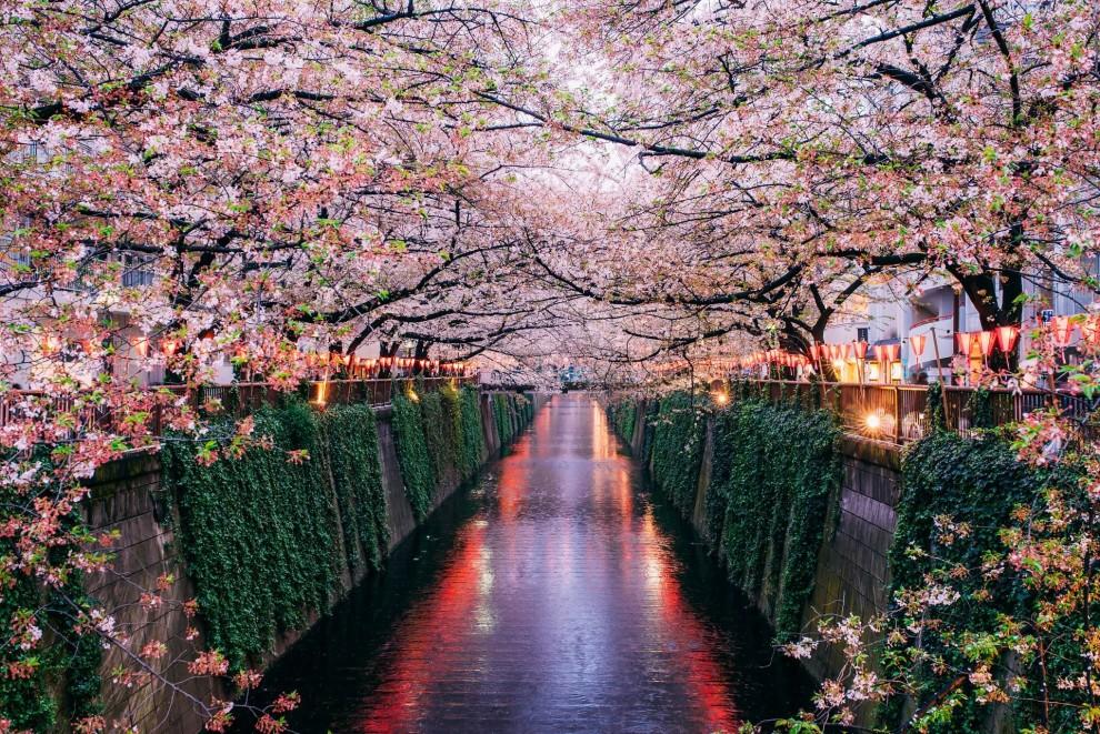 Река Мэгуро, Токио