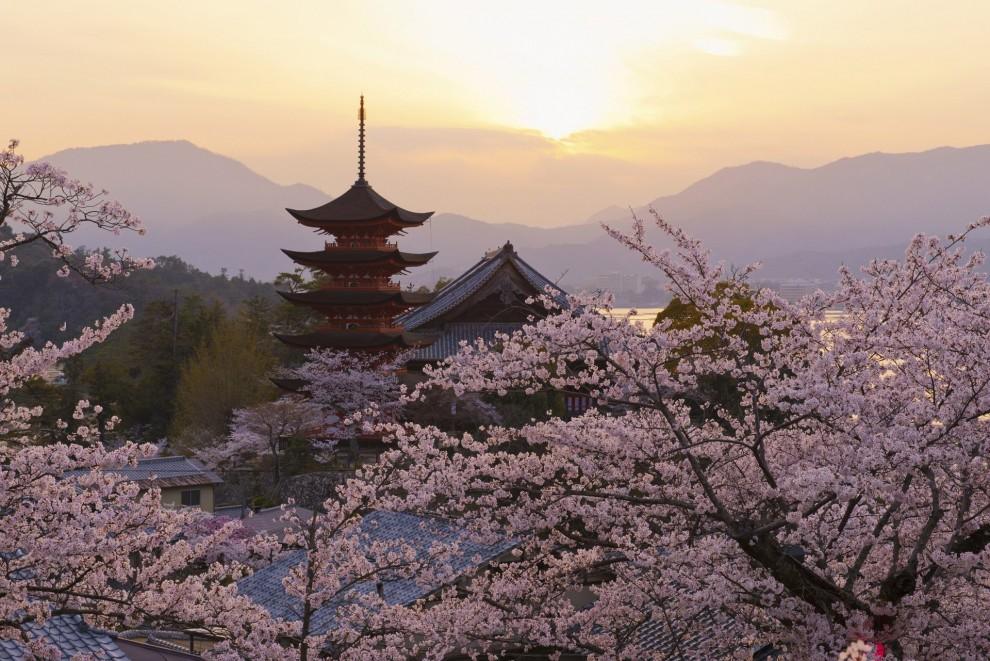 Святилище Ицукусима в Хацукаити