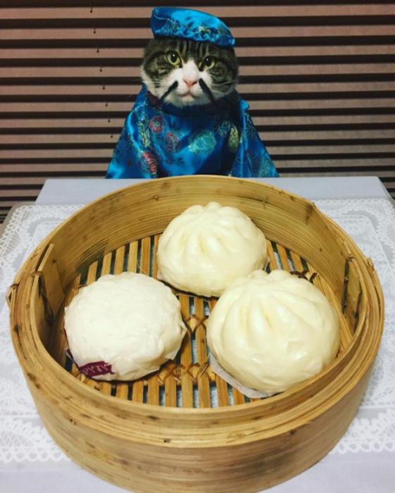 25 января в Японии - день китайских булочек на пару