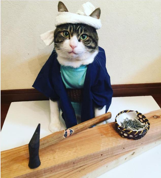 22 ноября в Японии празднуется День плотника