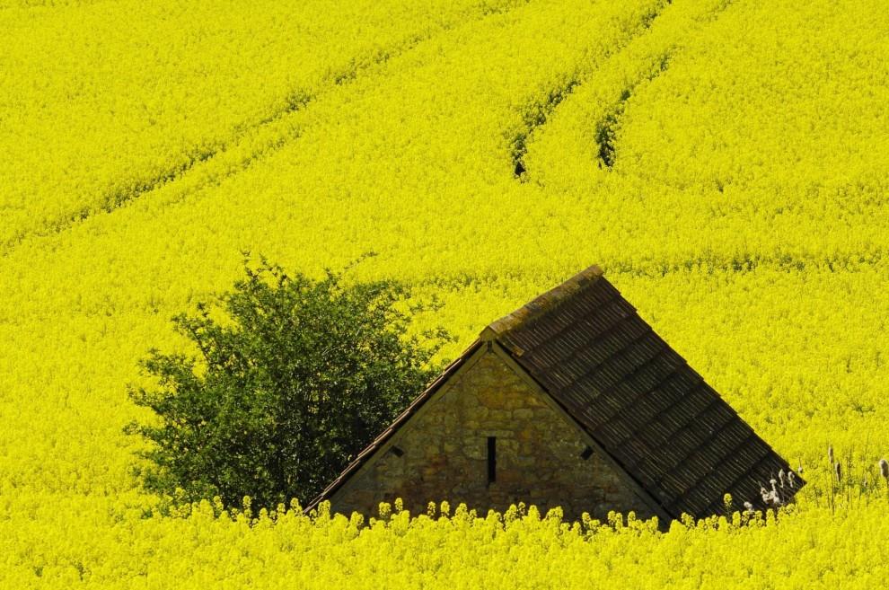 Заброшенный фермерский домик