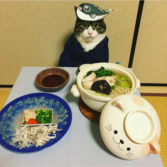 9 февраля - День рыбы-ежа в Японии
