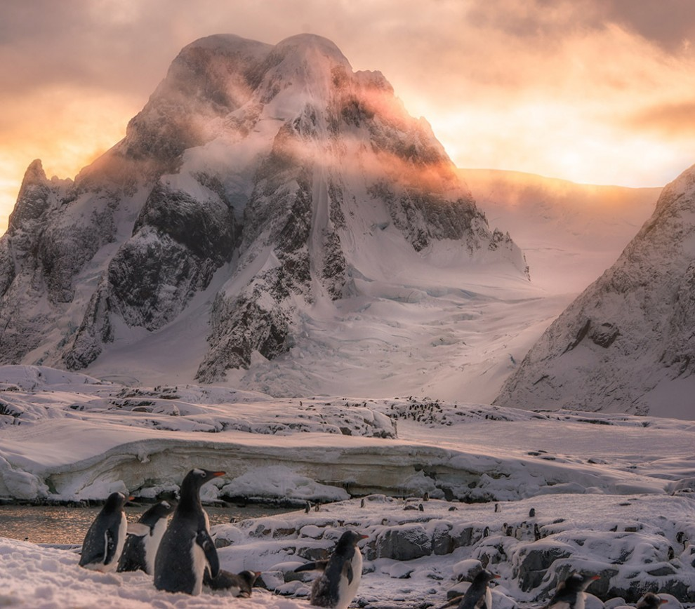Antarctica-27-6-990x868