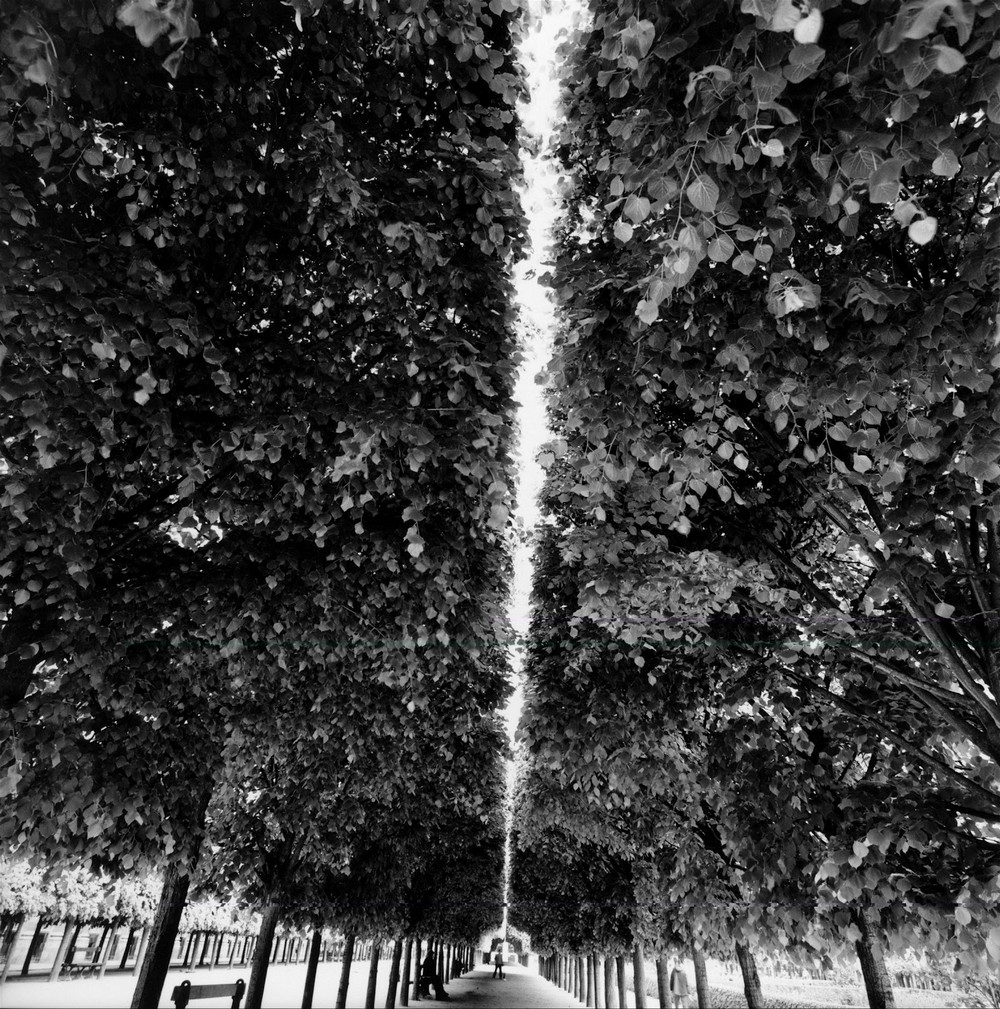 fotograf_bryus_devidson_10