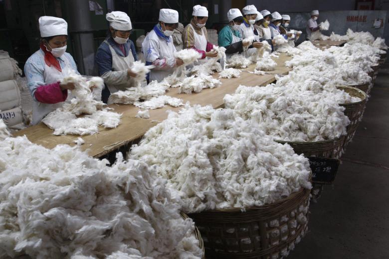kitajskie-fabriki-12-7