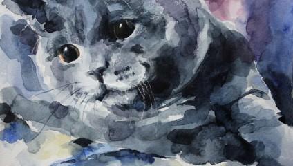 Британские коты в акварелях Елены Швед